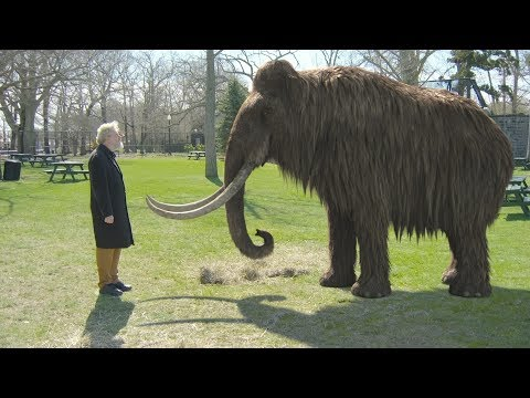 Extinct World Biggest Land Animal Cloned & Brought Back To Life - Meet Living Colombian Mammoth