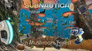 What You Can Find in NE Mushroom Forest! Subnautica