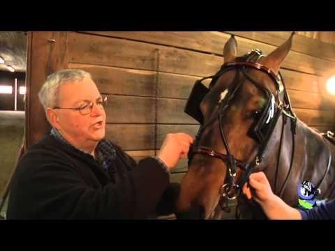 , title : 'How to Harness a Horse with Harry Sebring - Part 2