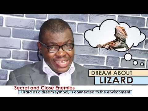 DREAM ABOUT LIZARD - EvangelistJoshua.com