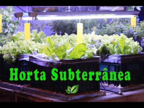 Hortas Subterrâneas