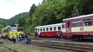 preview picture of video 'V Krásném Jezu se opět po 16-ti letech setkaly 3 osobní vlaky 28.6.2013'