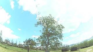Drone racer fpv avec capriotti franck
