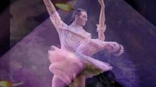 Dancing Shoes ~ Dan Fogelberg [ CC ]