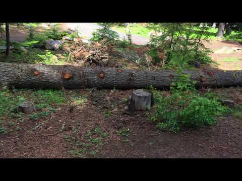Video Of Pebble Ford Campground, OR