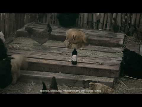 Andes Barley Wine Commercial (2013 - 2014) (Television Commercial)