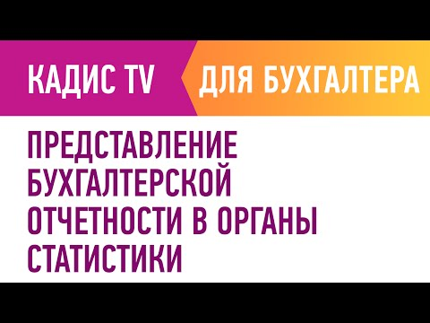Представление бухгалтерской отчетности в органы статистики.