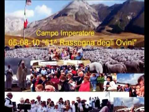 05/08/2010 CAMPO IMPERATORE 51^ Rassegna degli Ovini