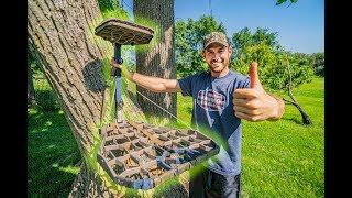 HOW TO HANG TREESTANDS!  Mobile Hunting Setup