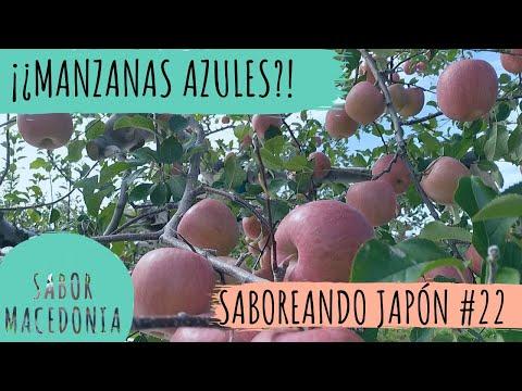 Cap.22: ¡¿Manzanas azules?!   Saboreando Japón