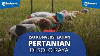 Terdapat Isu Konversi Lahan Pertanian di Kawasan Solo Raya, Ini Pendapat Ahli untuk Kepala Daerah