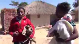 preview picture of video 'EPF Angola - #38 - Visiting Zambian families Part 1'