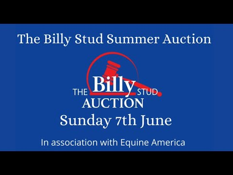 The Summer Auction Collection