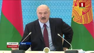 Масштабная работа над ошибками идёт в Оршанском регионе. Панорама