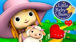 Mary Had A Little Lamb   Little Baby Bum   Nursery Rhymes for Babies   Videos for Kids