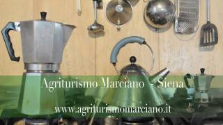 preview picture of video 'Agriturismo Marciano - Agriturismo in Siena - Toscana'