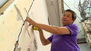 Tin Tức 24h Mới Nhất: Tái phát triển nghề nuôi tôm sú ở Phú Yên