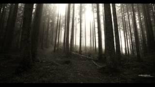 DRACONIAN - Akherousia (OFFICIAL DARK LYRICS VIDEO)