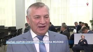 Новости-на-Дону в 18.30 от 21 марта 2019