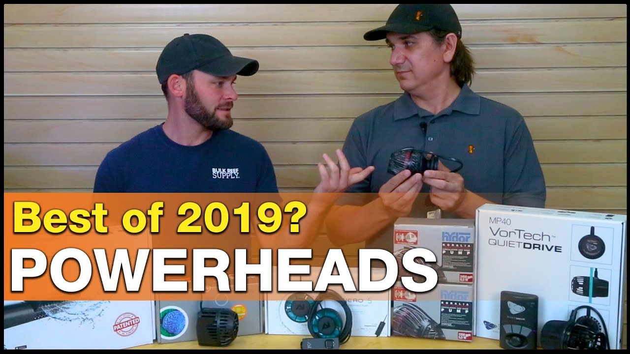 Best Powerheads of 2019 - Find the BEST pump for your reef tank