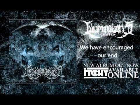 Illuminations (Trapped)