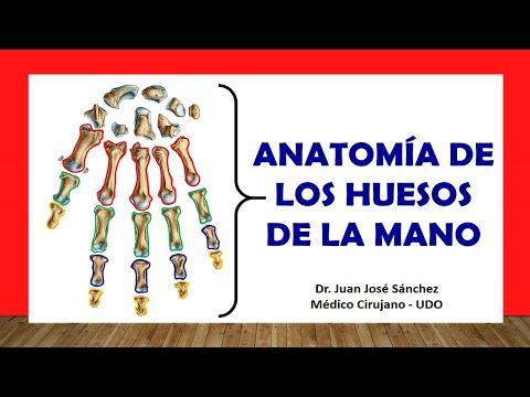 Sintomi di danno al legamento laterale del ginocchio