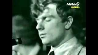 Them - Gloria (Live in France)