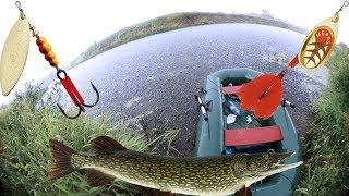 Ловля щуки в калининградской области осенью
