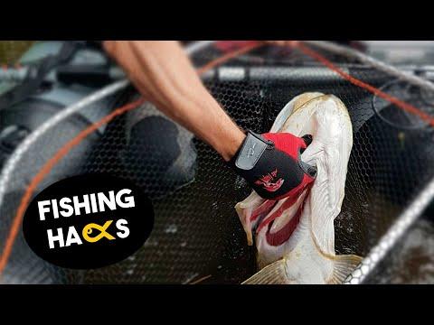 Tipps und Tricks zum schonenden Umgang mit Fischen | #FishingHacks