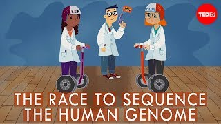 The race to sequence the human genome – Tien Nguyen