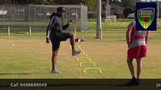 Fitness for Cricket