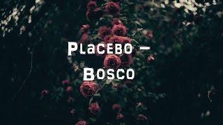 Placebo - Bosco [Acoustic Cover.Lyrics.Karaoke]
