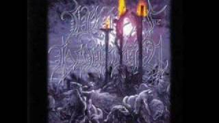 Liar of Golgotha - Night Of The Falling Stars
