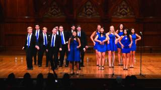 Don't You Worry 'Bout A Thing (John Legend) - The Harvard Callbacks