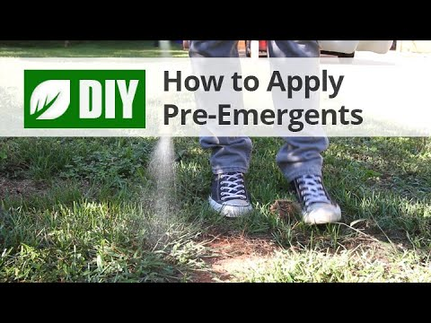 Pre Emergent Herbicide Weed S