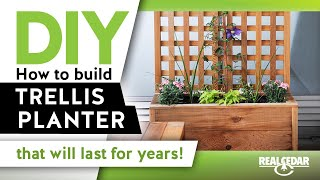 How to build: Trellis Vertical Garden
