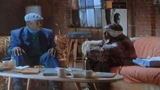 Illegal (Mr. Malik & Jamal) - Back In The Day [Explicit]