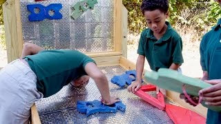 Elementary Engineering: From Simple Machines to Life Skills