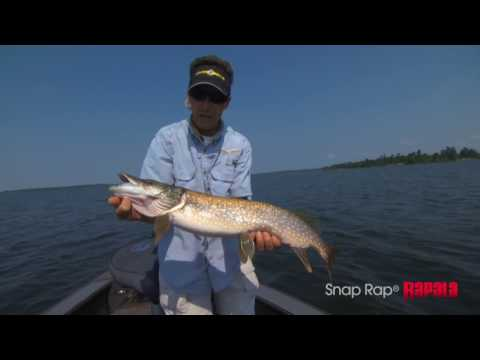 Балансир RAPALA SNAP RAP SNR08-GOT фото №1