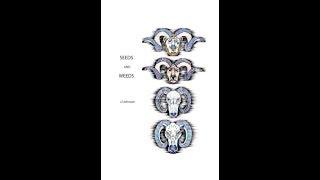 3 Seeds - Drei Samen (German translation)