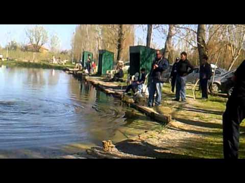 Ricette di unesca su pesca