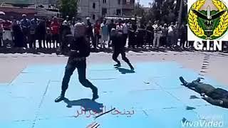 القوات الخاصة الجزائرية حضيرة الشل والتدخل G.I.N 2019 فيديو جديد