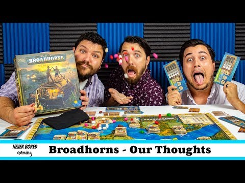 Never Bored Gaming - Our Thoughts