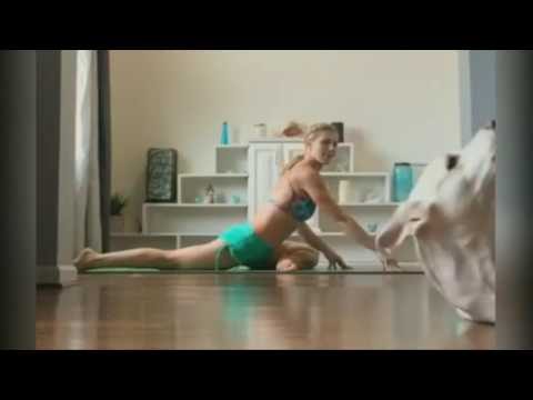 Singing Dog Ruins Yoga Video