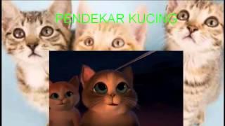 Gambar cover FILM ANIMASI II PENDEKAR KUCING