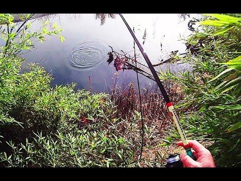 La pesca su rete in KhMAO