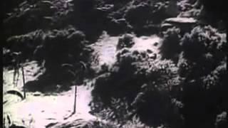 Tarzan The Fearless 1933