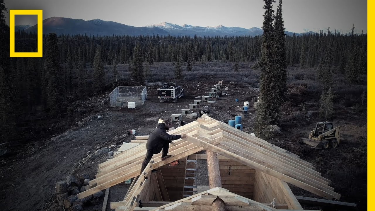 Building a Cabin in the Arctic | Life Below Zero thumbnail