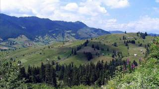 Bucovina-Straja