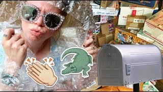 Swamp Family Mail!- HURRICANE Edition?